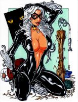 Black Cat 2008 by ericborc