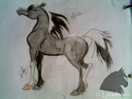 Neveh by Leadmare