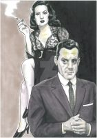 Perry Mason and the Case of the Vicious Vixen by Hognatius