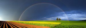 Double Rainbow by samuelbitton