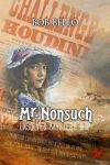 Mr. Nonsuch by Timeship