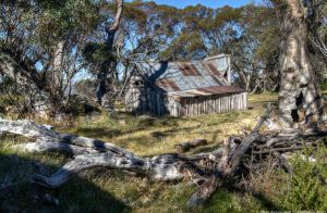 Wallace's Hut 1 by djzontheball