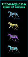 Tronequine Markings Guide by RainbowFountains
