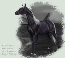 Andriel Reference by Magdaitiro