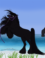 Wicca's Arrival by Cerulean-Sky-Stables