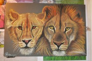 Lion Couple by WolfHowl10