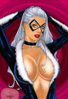 Black Cat by Rubismar da Costa by winchester01