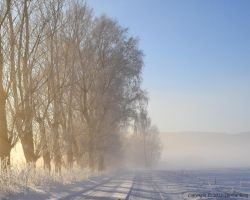 Winter landscape 2 by ThereseBorg