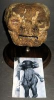 Mummified Deformed Baby Head 1 by DETHCHEEZ