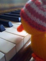 Peter the Duck Plays Piano by leadmetowonderland