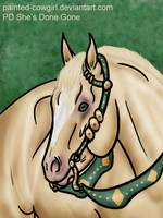 Fly - Irish Halter by painted-cowgirl