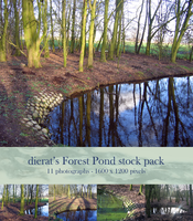 Forest Pond stock pack by dierat-stock