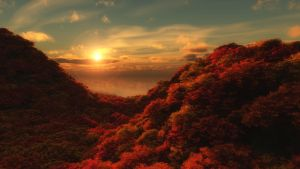 Morning color_4K UHD by relhom