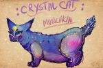 Crystal Cat Munchkin by NazzCat