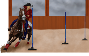 MPL Superstitious pole entry by Wild-Rose-Ranch