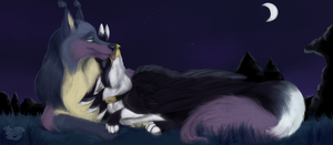 Under the stars by Husky-Foxgryph