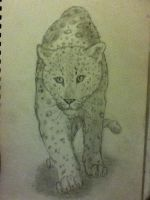 Leopard Sketch by SilverSoul1496