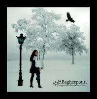 Black and White by FairieGoodMother