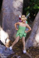 Tinkerbell : 02 by Lil-Kute-Dream