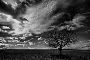 Early Winter by cahilus
