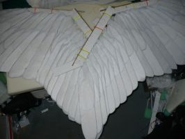 My 100 percent completed wings by benzene66
