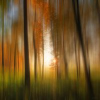 Another autumn dream by ursularodgers