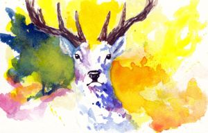 Colorfull deer by Un-zoon