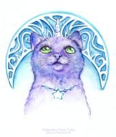The Cat and the Moon by Anhyra
