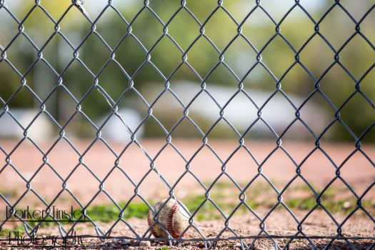 On the Fence by parkertinsley