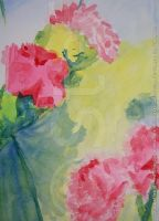 Carnations - Detail06 by stefonthesea