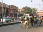 Wedding carriage in India by Matilly
