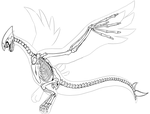 Lugia Skeleton by Chibi-Pika