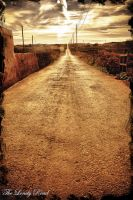 The lonely Road by calimer00