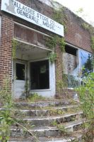 Tallassee Store Steps - 2015 by CrystalMarineGallery