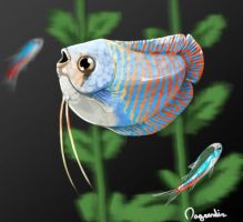Fishy Speedpaint by Nagrandia