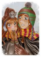 Ron and Hermione in winter... by marixon