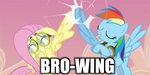 Hurricane Fluttershy Browing - ICON x 2 by BrownieComicWriter
