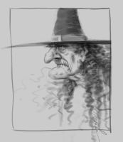 Witch...or Gerry B... by maringouin