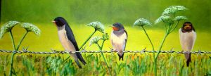 Birds on a wire by WendyMitchell