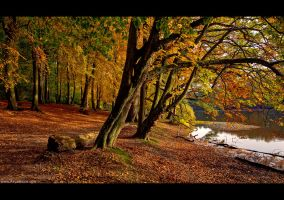 Fall has Fallen by KeldBach