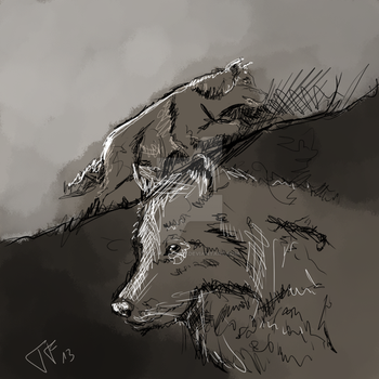 Wolves study by Texas--flood