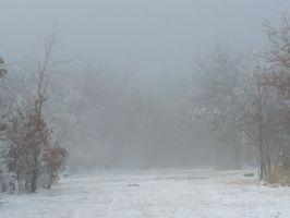 Foggy Winter102 by effing-stock