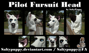 Pilot Fursuit Head by SaltyPuppy
