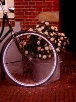 Bike and Flowers by i-am-your-idea