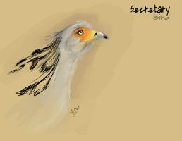 Secretary Bird by CleverFoxImages