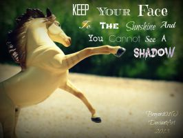 Keep Your Face to the Sunshine by Breyer101