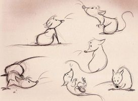 Ratties by Mitch-el