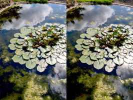 Lily Pond Palette Knife Painted Stereo by aegiandyad