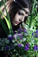 The steel and the flowers by AliceSpiegel