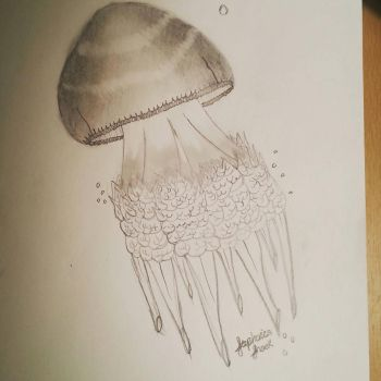 Jellyfish by Stephie212202